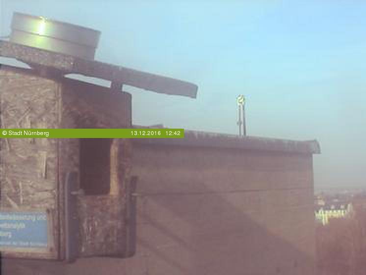 Aktuelles Bild der Webcam Falkenhorst - Außenansicht